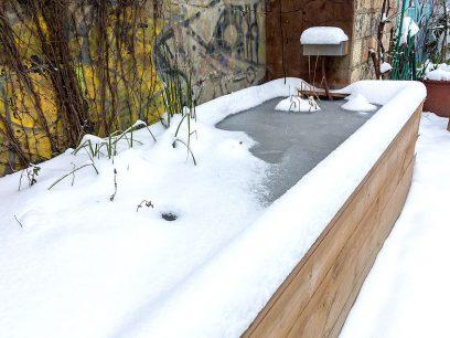 bassin-aquatique-3